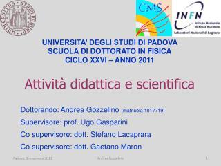 Attività didattica e scientifica