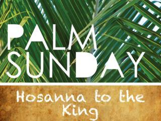 """Those who went ahead and those who followed shouted,  """"Hosanna!"""""""