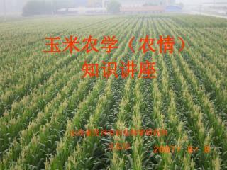 玉米农学(农情) 知识讲座 山东省兖州市农业科学研究所 王立功