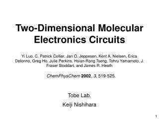 Two-Dimensional Molecular Electronics Circuits