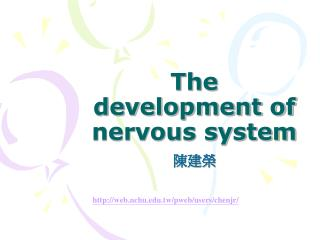 The development of nervous system