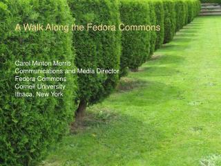 A Walk Along the Fedora Commons Carol Minton Morris Communications and Media Director