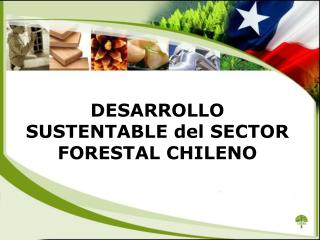 DESARROLLO SUSTENTABLE del SECTOR FORESTAL CHILENO