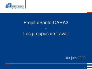 Projet eSanté-CARA2  -  Les groupes de travail