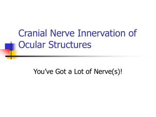 Cranial Nerve Innervation of Ocular Structures