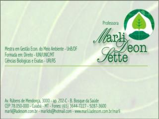 Estatuto da Cidade Professora Marli  Deon Sette   – 2010.2 e-mail  marli@ladesom.br