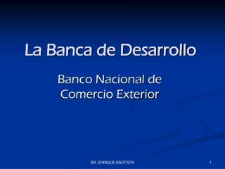 La Banca de Desarrollo