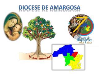 Diocese de Amargosa