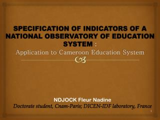 NDJOCK Fleur Nadine  Doctorate student, Cnam-Paris; DICEN-IDF laboratory, France