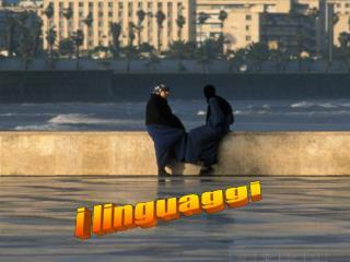 i linguaggi