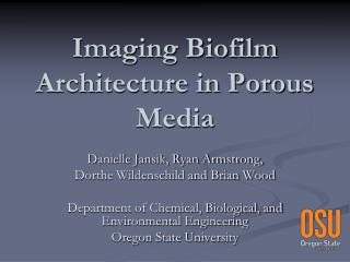 Imaging Biofilm Architecture in Porous Media