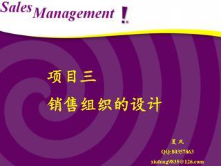项目三 销售组织的设计