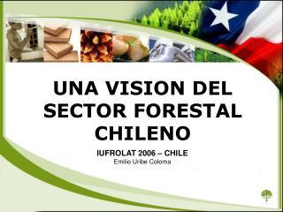 UNA VISION DEL SECTOR FORESTAL CHILENO