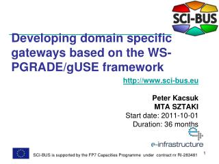 Developing domain specific gateways based on the WS-PGRADE/gUSE framework
