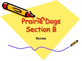 Prairie Dogs Section B