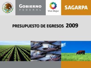 PRESUPUESTO DE EGRESOS   2009