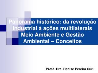 Profa. Dra. Denise Pereira Curi