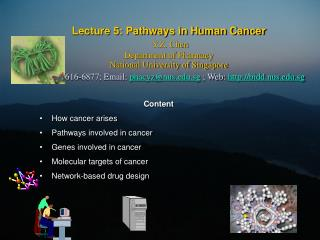 Content How cancer arises Pathways involved in cancer Genes involved in cancer