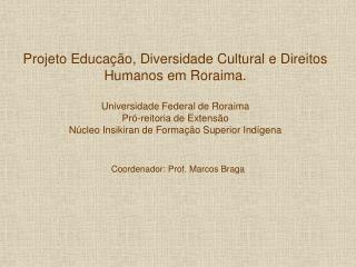 Coordenador: Prof. Marcos Braga