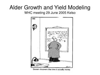 Alder Growth and Yield Modeling WHC meeting 29 June 2005 Kelso