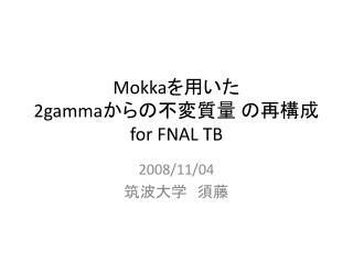 Mokka ???? 2gamma ??????? ???? for FNAL TB