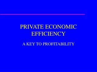 PRIVATE ECONOMIC EFFICIENCY
