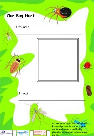 Our Bug Hunt