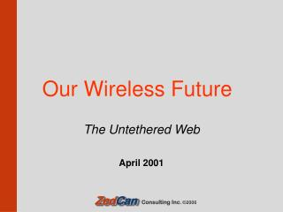 Our Wireless Future