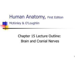 Human Anatomy, First Edition McKinley  OLoughlin