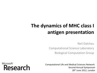 The dynamics of MHC  class I antigen presentation