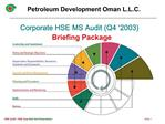 Corporate HSE MS Audit Q4  2003 Briefing Package