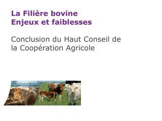La Filière bovine Enjeux et faiblesses Conclusion du Haut Conseil de la Coopération Agricole