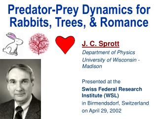 Predator-Prey Dynamics for Rabbits, Trees,  Romance
