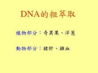 DNA 的粗萃取