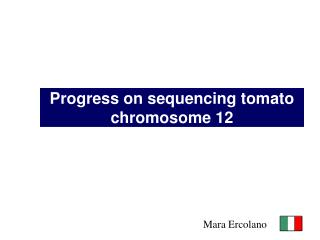 Progress on sequencing tomato chromosome 12