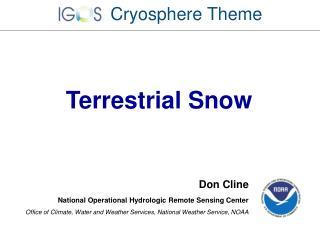 Terrestrial Snow