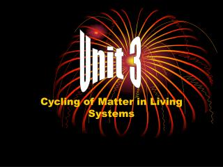 Cycling of Matter in Living Systems