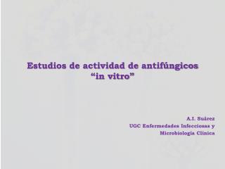 """Estudios de actividad de  antifúngicos  """"in vitro"""""""