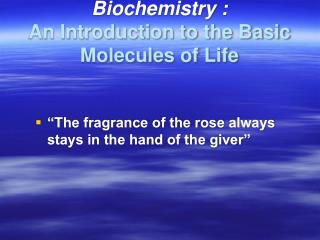 Biochemistry : An Introduction to the Basic Molecules of Life