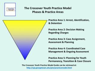 Practice Area 1: Arrest, Identification,  & Detention Practice Area 2: Decision Making