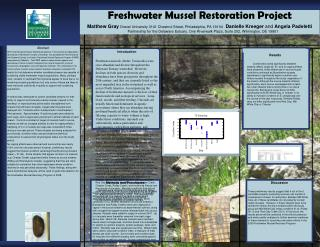 Freshwater Mussel Restoration Project