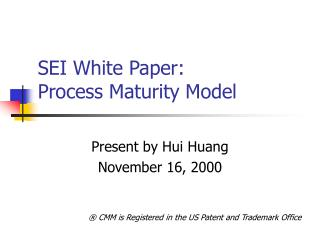 SEI White Paper:  Process Maturity Model