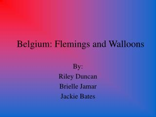 Belgium: Flemings and Walloons