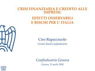CRISI FINANZIARIA E CREDITO ALLE IMPRESE:  EFFETTI OSSERVABILI  E RISCHI PER L' ITALIA