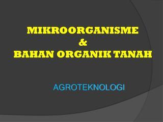 MIKROORGANISME &  BAHAN ORGANIK  TANAH