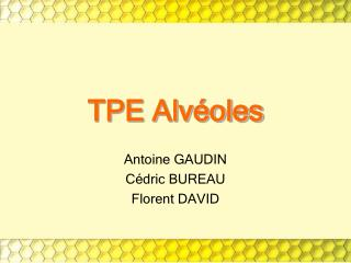 TPE Alv�oles