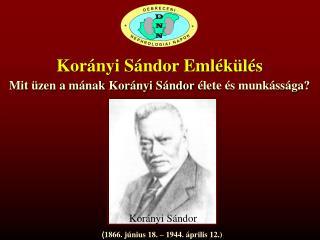 Korányi Sándor Emlékülés