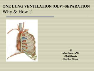 ONE LUNG VENTILATION OLV-SEPARATION  Why  How