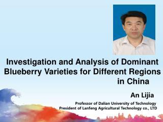 An Lijia Professor of Dalian University of Technology