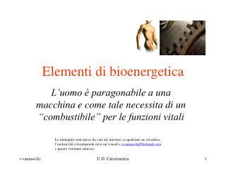 Elementi di bioenergetica